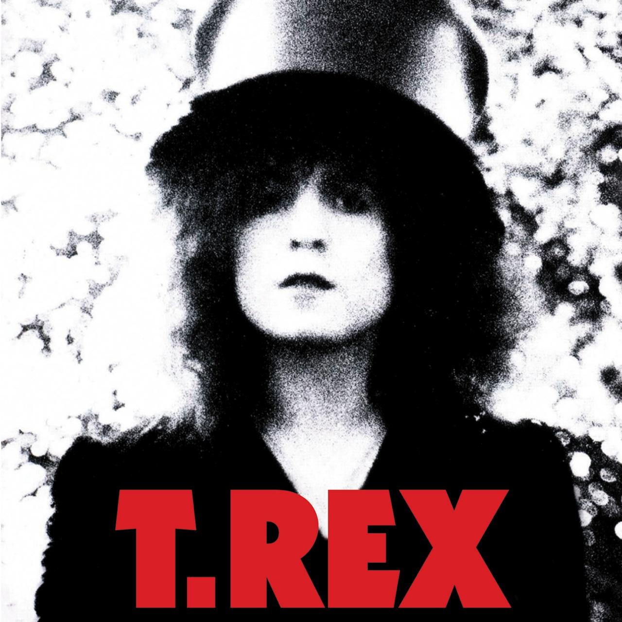 Rex - The Slider | Album Art | Pinterest | Sliders, Marc Bolan and ...