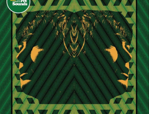 Stream 'A Tribute to Pet Sounds' compilation via Stereogum