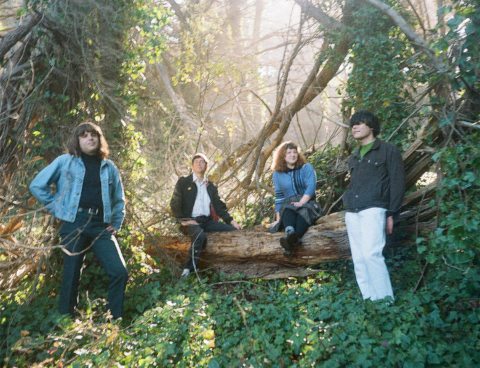 """Watch The Umbrellas' homemade monster movie music video for """"Near You"""" – their self-titled debut LP is due 8/6 via Slumberland Records"""